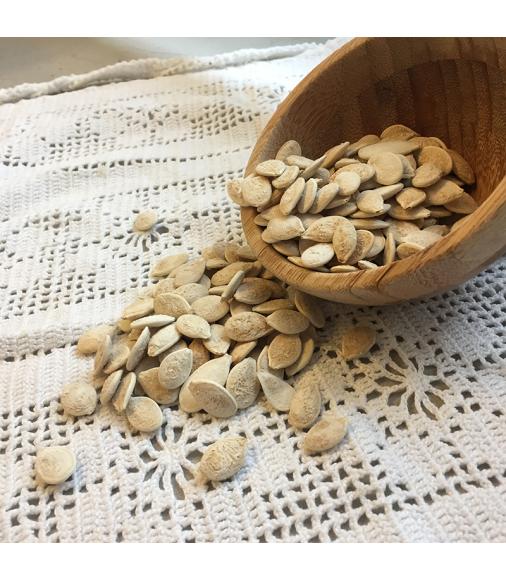 semi di zucca tostati salati 1 kg